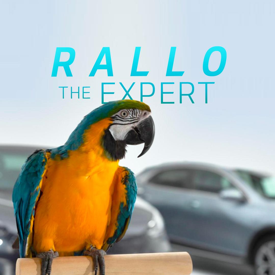 rallo_thumb